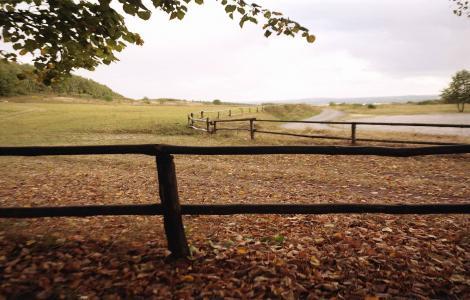 Landskabet-ved-Kielce