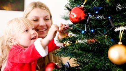 Polakkerne_har_købt_4_mio_juletræer_i_2008