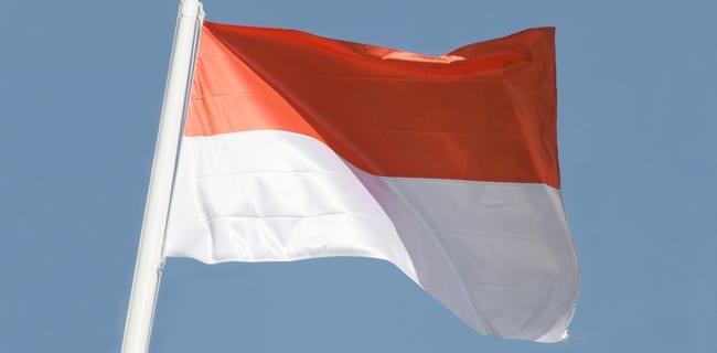 Polen_skifter_nationalflag_polennu