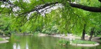 Poznan,-Wilsons-Park
