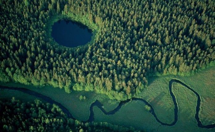 Rospuda_dalen_-_ved_Rospuda-floden_i_det_nordvestlige_Polen