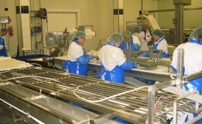 Royal_Greenlands_fabrik_i_Polen_følger_danske_standarder_polennu