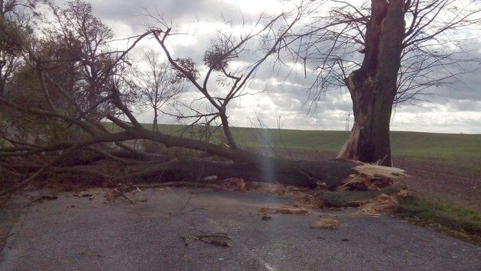 Stormvejr_koster_en_livet_i_det_norlige_Polen_0