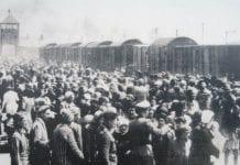 UDRYDDELSESLEJRE-Auschwitz-I-II-III-Birkenau