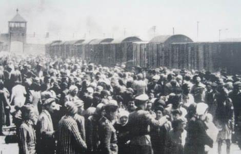 UDRYDDELSESLEJRE-Auschwitz-I-II-III-Birkenau_0