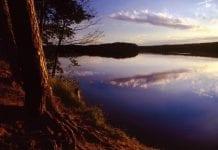 __domr__der-i-forbindelse-med-nationalparken