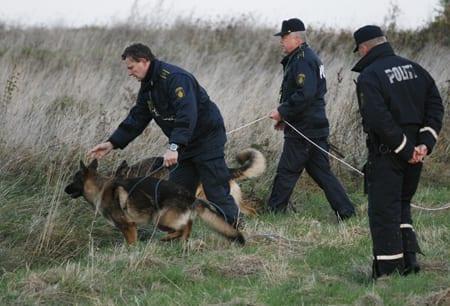 danske_politi_hunde