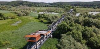 tysk-polsk bro